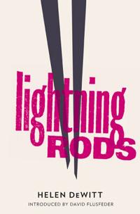 Lightning Rods - Helen DeWitt